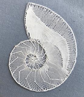 Coquillage de Vivien (modèle de N.Sauret)
